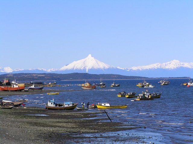 Accordo UE-Cile sul commercio di prodotti biologici