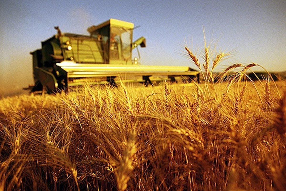 Agricoltura contro i cambiamenti climatici