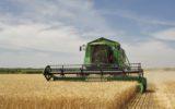 Agricoltura e immigrati: raccolti a rischio senza stagionali
