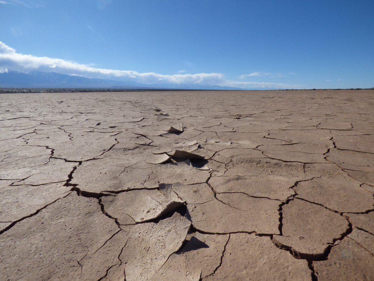 Agricoltura in Italia: è allarme siccità