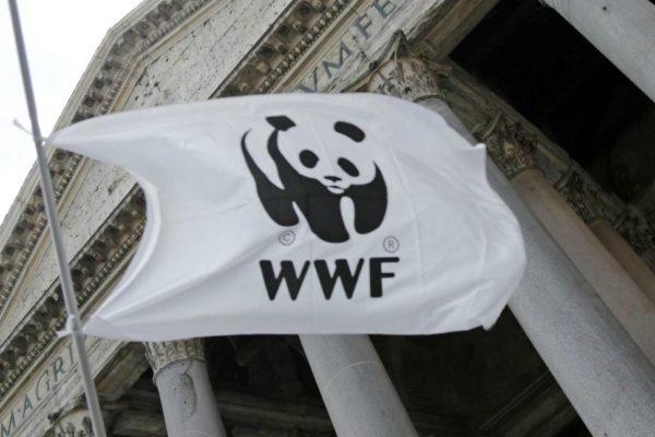 Amici dell'ambiente o Complici dell'inquinamento?
