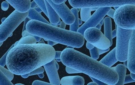 Antibiotici e resistenze batteriche