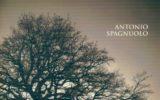 Antonio Spagnuolo: quando la poesia esprime dolore e sofferenza