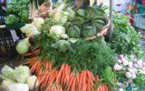 Aumenta il consumo di cibo Bio