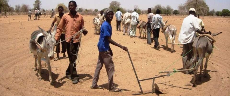 Aumentano gli aiuti umanitari per il Sudan