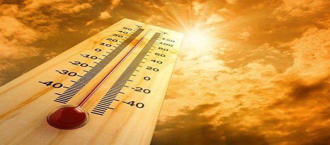 Aumento dei decessi nell'anno più caldo di sempre