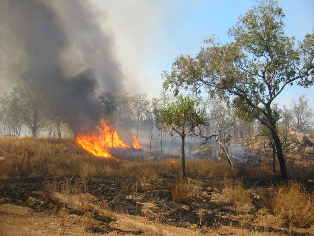 Australia: gli stati orientali in fiamme