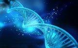 Autismo: nuovi studi sulla malattia
