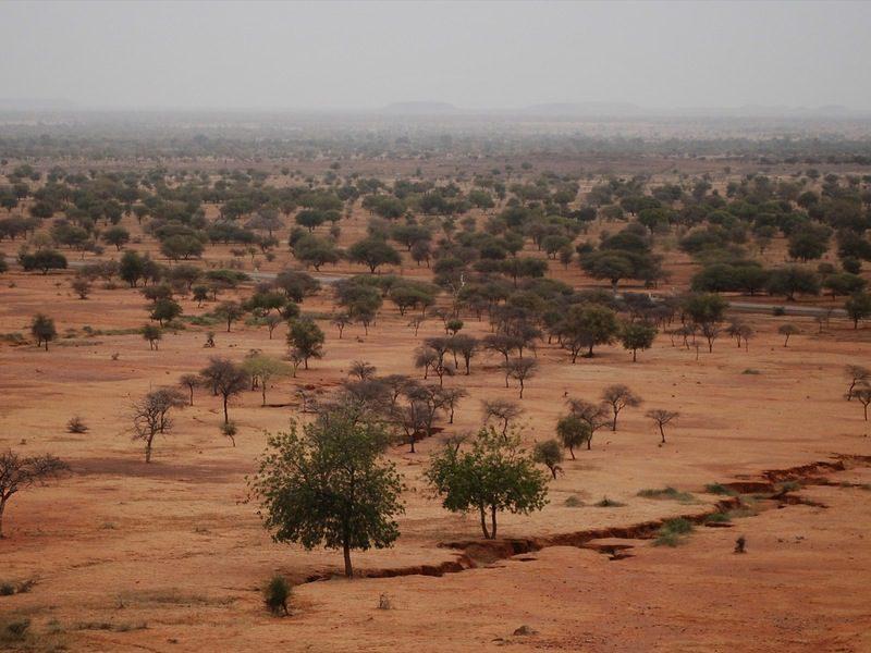 Bambini africani e scuola: lezioni via radio