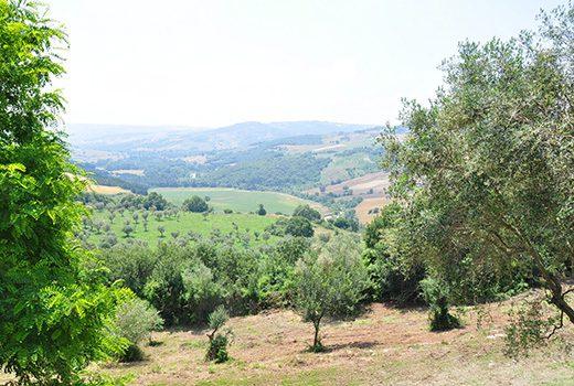 Benevento: per valorizzare le filiere agroalimentari locali