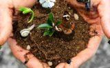 Biodiversità: l'allarme lanciato da Legambiente