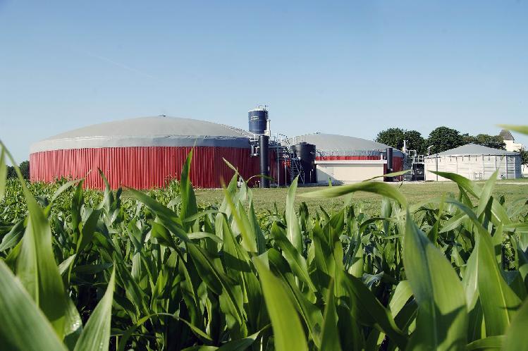 Biogas agricolo: un patto Eni-Coldiretti