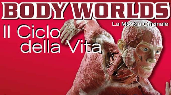 BODY WORLDS. IL CICLO DELLA VITA DI GUNTHER VON HAGENS