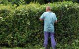 Boom di giardinieri in Italia