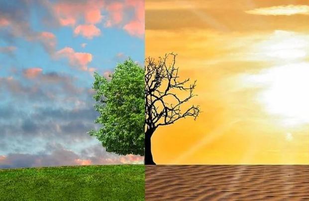 Cambiamenti climatici: il Consiglio adotta la strategia a lungo termine