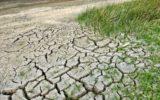 Cambiamenti climatici: metropoli europee promosse