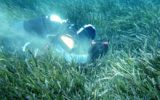 Cambiamento climatico: spiagge a rischio