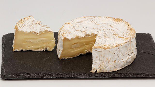 Camembert e bryndza: l'universo dei formaggi si arricchisce con due nuove specialità