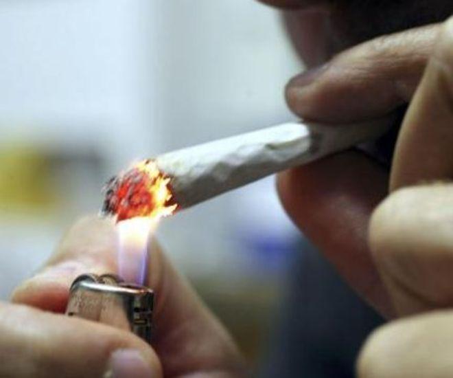 Cannabis trampolino di lancio  per alcol e nicotina?
