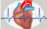 Cardiomiopatia: gli ultimi passi avanti della medicina