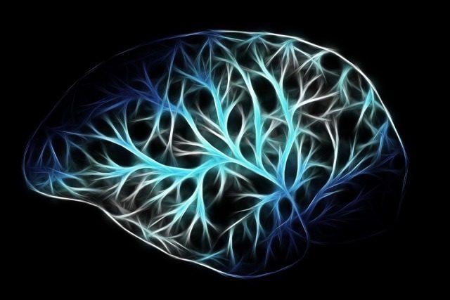 Cloro nel cervello: la prima misura in-vivo