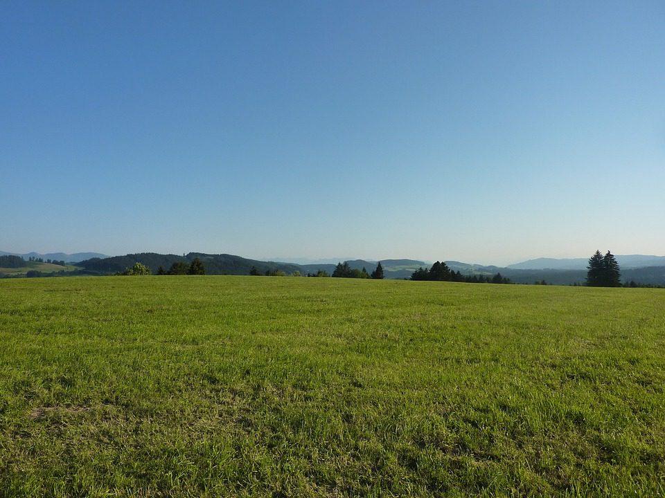 Coldiretti: L'Italia e le imprese agricole