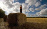 Coldiretti: piano giovani agricoltori