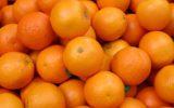 Coldiretti: tagliato un arancio su tre in Italia