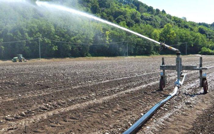 Coltivazioni in sofferenza per il caldo: al via irrigazioni di soccorso