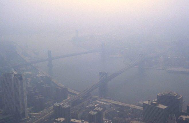 Colture a rischio: smog e finta primavera