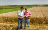 Compag in Francia per rilanciare il grano duro