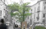 Comune di Napoli: Adotta una strada