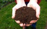 Concimi per l'agricoltura: le nuove norme adottate dall'Unione Europea