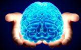 coronavirus cervello nebbia cognitiva