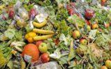 Consumi: gli italiani contro gli sprechi aliementari