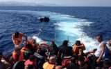 Crisi migranti: s'intensifica lo scambio d'informazioni (ma si fa molto poco)