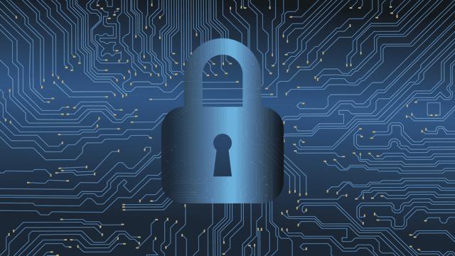 Dal muoversi in maniera sostenibile alla Cyber Security