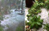 Danni nei campi per i temporali e la grandine