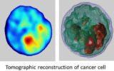 Diagnosi precoce dei tumori: premiata una recente ricerca del Cnr-Isasi di Pozzuoli