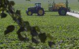 Dimezzati pesticidi nell'agricoltura italiana