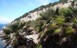 Ecoturismo al Parco nazionale Circeo