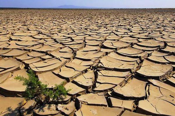 Emergenza siccità in Etiopia