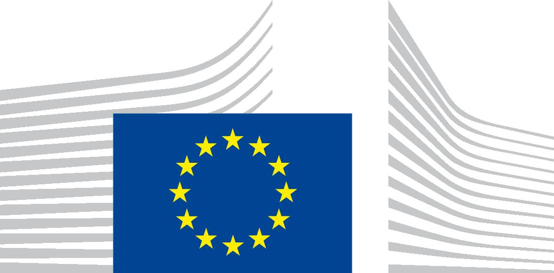 Europa orientamenti di bilancio per il 2017