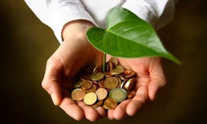 Finanza verde: la posizione del Consiglio