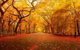 Finisce l'autunno più caldo di sempre