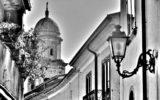 FioreVagabondO in CampaniA: Nusco