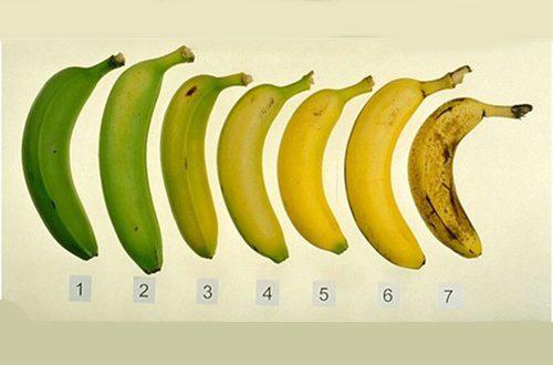 Fungo killer della banane. Rischio estinzione