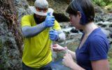 Geologia: i microorganismi che la influenzano