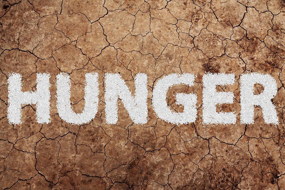 Giornata Mondiale dell'Alimentazione: la drammatica situazione nel Corno d'Africa