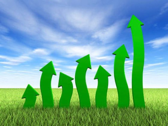 Green Economy on Capital Markets